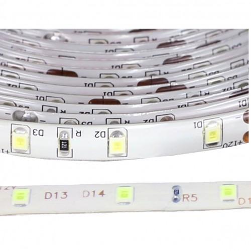 Tira led 12V blanco 6000ºK exterior IP65 60leds SMD2835 Bobina 5 mts