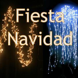 Luz LED decorativa y Navidad