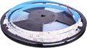 Tira led 24V SMD5050 4000K JND-7668N